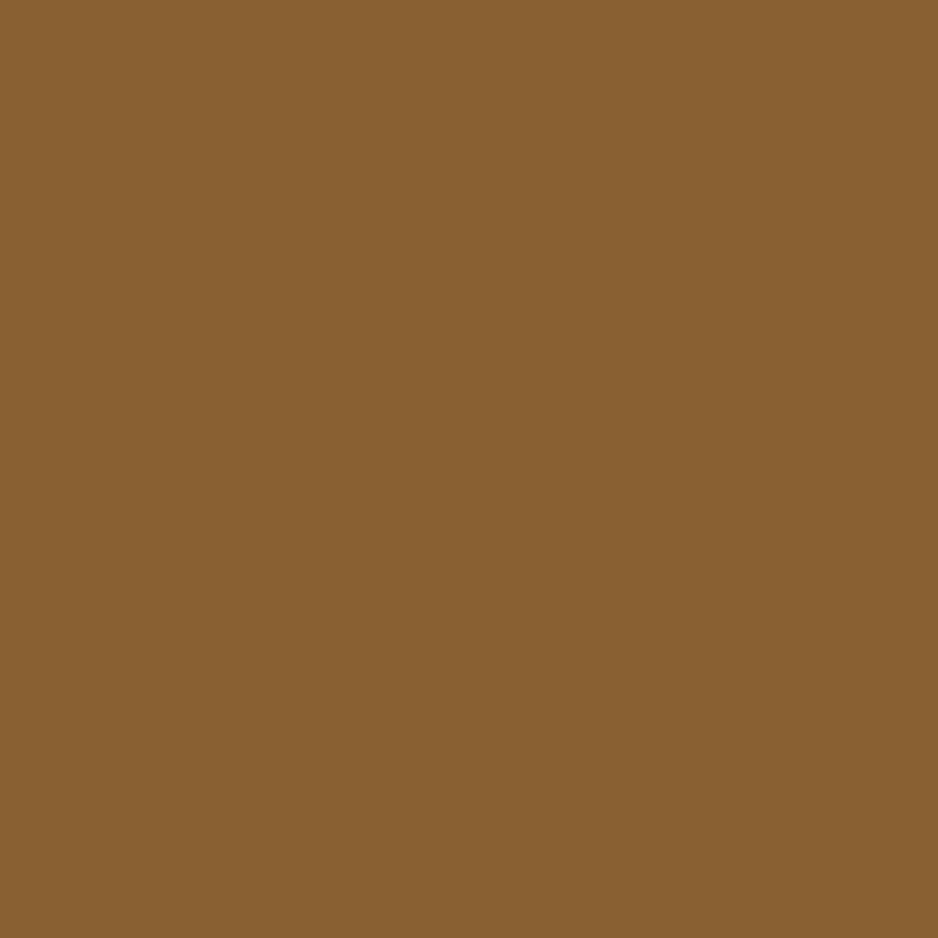 Frühlingszwiebeln (Allium cepa L.)
