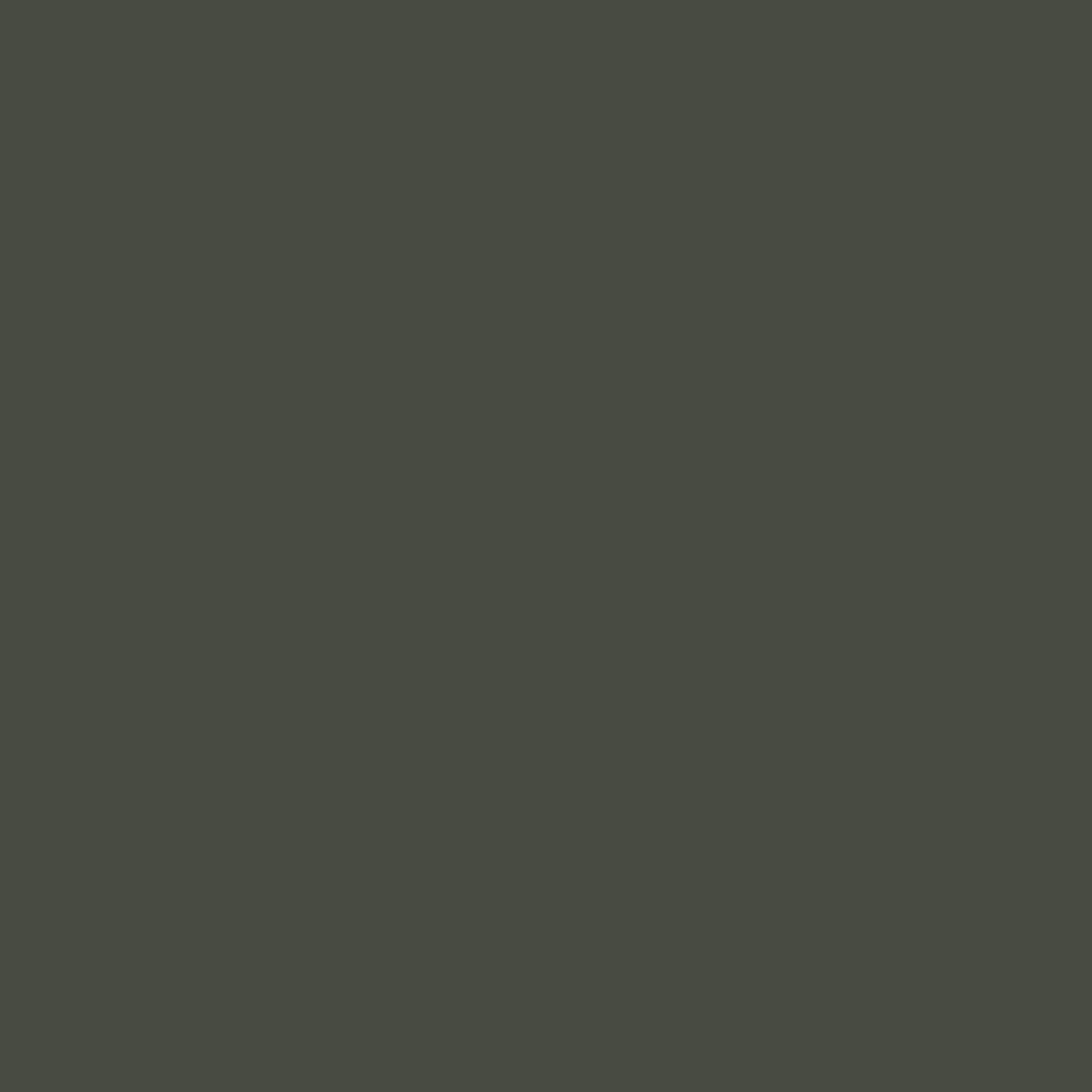 Menma – Marinierte Bambussprossen